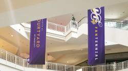 Vikings Banner at Mall of America