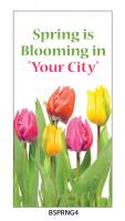 Street_Pole_Banner_Spring_BSPRNG4